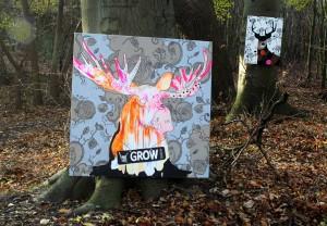 Hornede dyr og mønstre på skovtur til photo shoot
